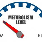 Metabolizmus